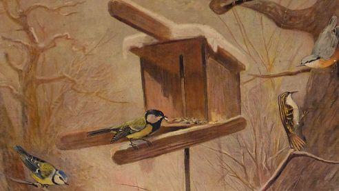 Výstava Ptáci na krmítku