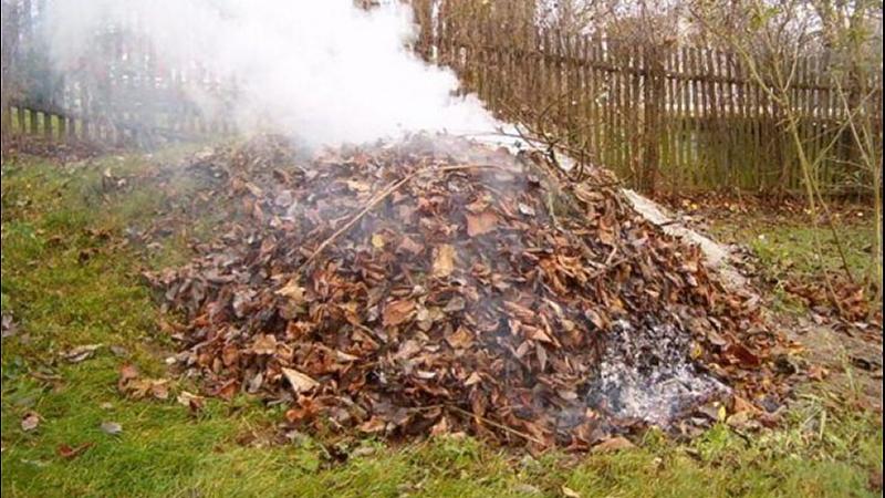 Výsledek obrázku pro pálení klestí